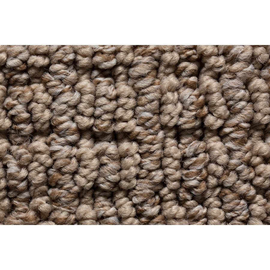 STAINMASTER Sojourn Active Family Country Trail Berber Carpet Sample
