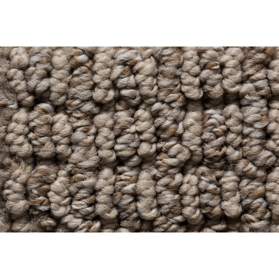STAINMASTER Sojourn Active Family New Heights Berber Carpet Sample