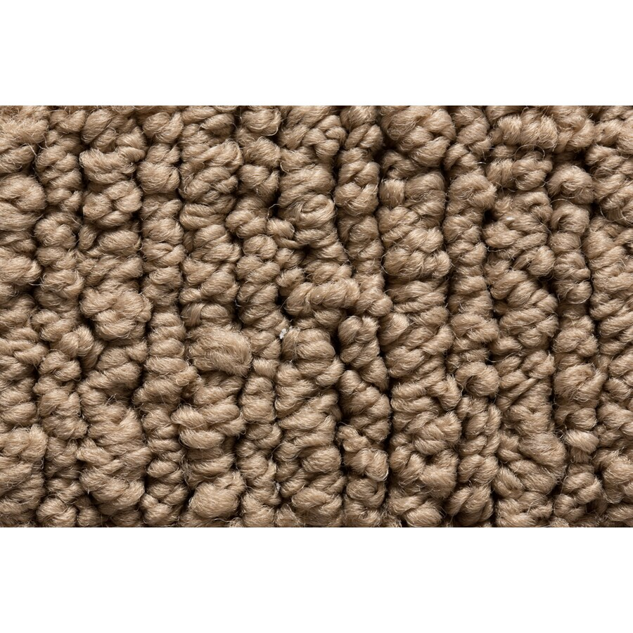 STAINMASTER Sojourn Active Family Crafted Detail Berber Carpet Sample