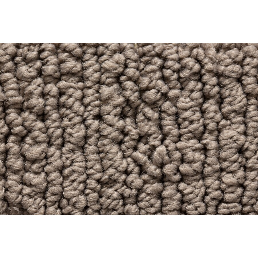 STAINMASTER Sojourn Active Family Visual Comfort Berber Carpet Sample