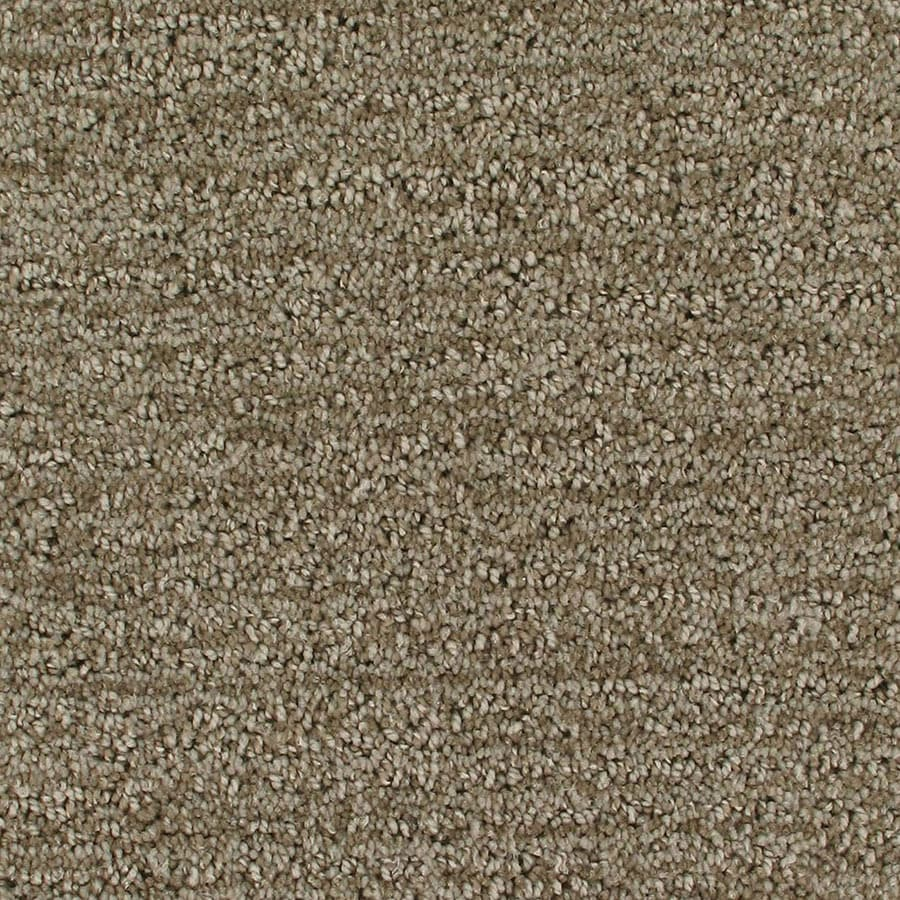 STAINMASTER Orion Active Family Halo Cut and Loop Carpet Sample
