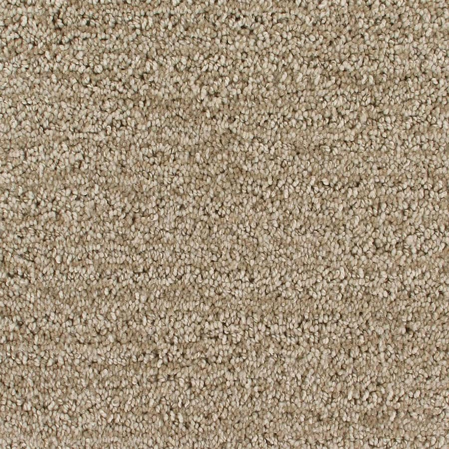 STAINMASTER Orion Active Family Galileo Cut and Loop Carpet Sample