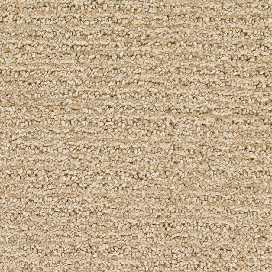 STAINMASTER Orion Active Family Big Dipper Cut and Loop Carpet Sample