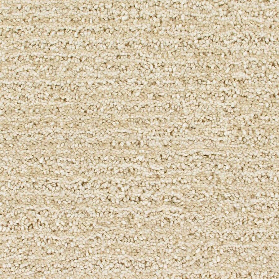 STAINMASTER Orion Active Family Supernova Cut and Loop Carpet Sample