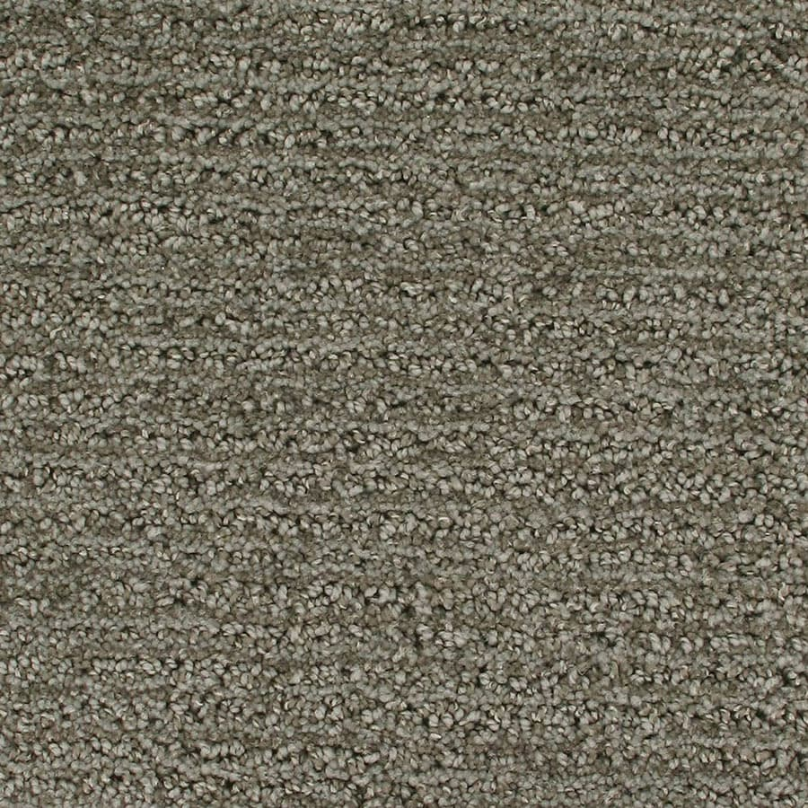 STAINMASTER Orion Active Family Viking Cut and Loop Carpet Sample