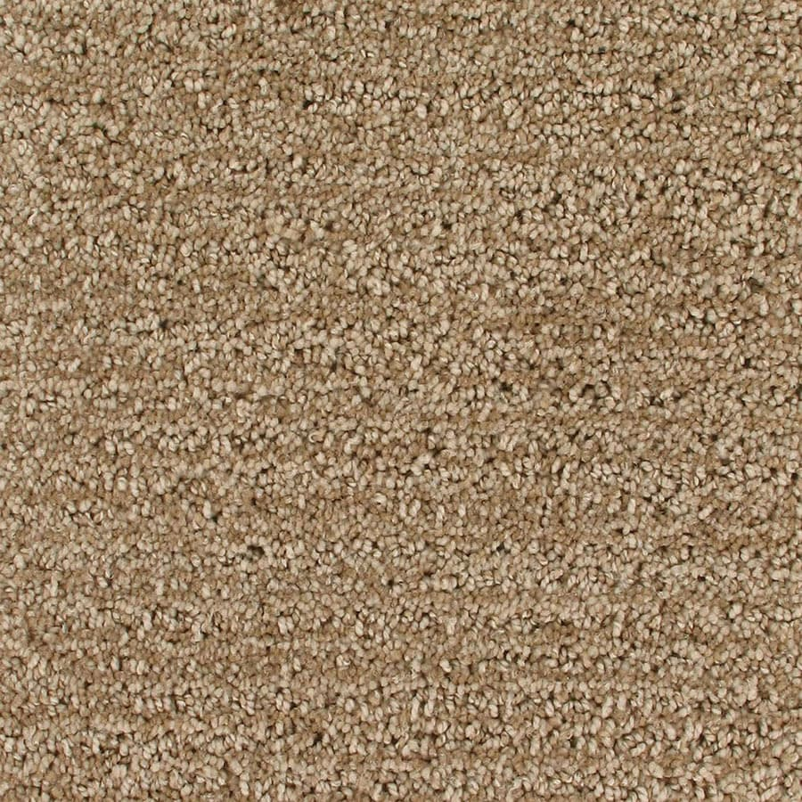 STAINMASTER Orion Active Family Combustion Cut and Loop Carpet Sample