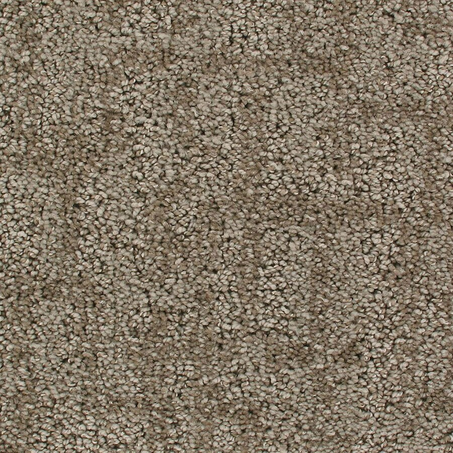 STAINMASTER Galaxy Active Family Ulysses Cut and Loop Carpet Sample