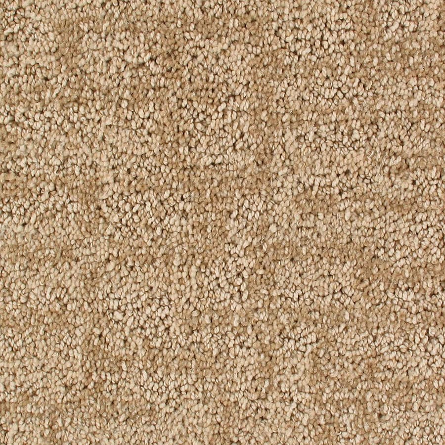 STAINMASTER Galaxy Active Family Irongate Cut and Loop Carpet Sample