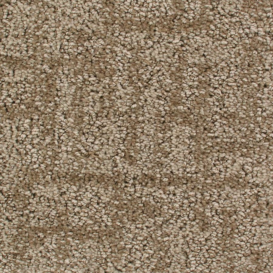 STAINMASTER Galaxy Active Family Early Morning Cut and Loop Carpet Sample