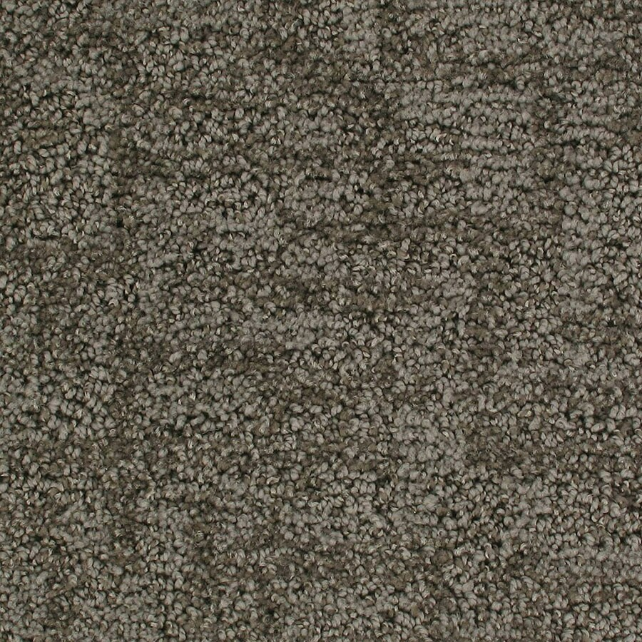 STAINMASTER Galaxy Active Family Launch Cut and Loop Carpet Sample