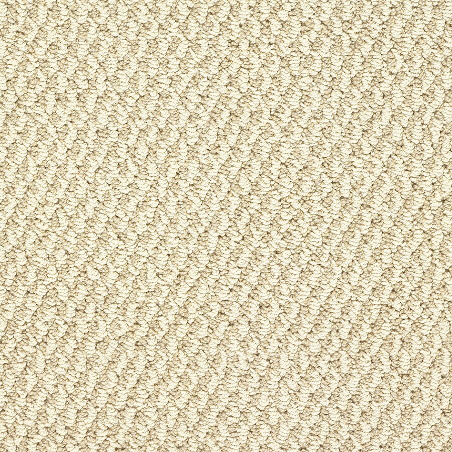 STAINMASTER Oracle Active Family Monument Valley Berber Carpet Sample