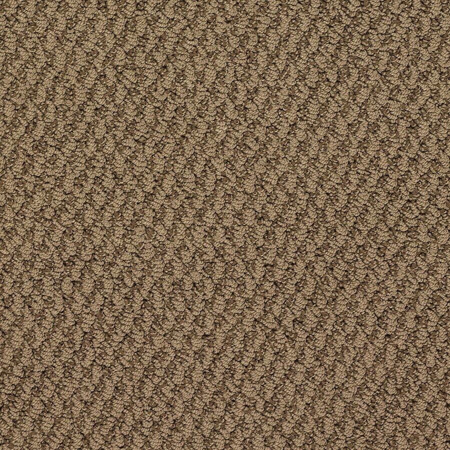 STAINMASTER Oracle Active Family Apple Pie Berber Carpet Sample