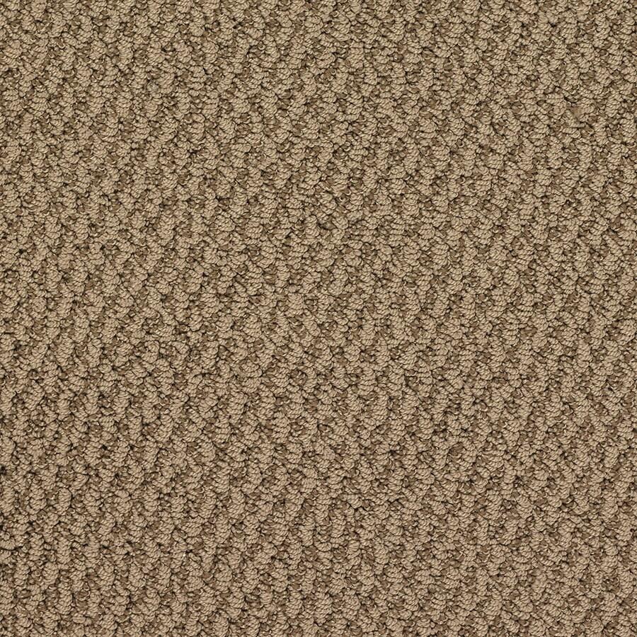 STAINMASTER Oracle Active Family Baseball Berber Carpet Sample