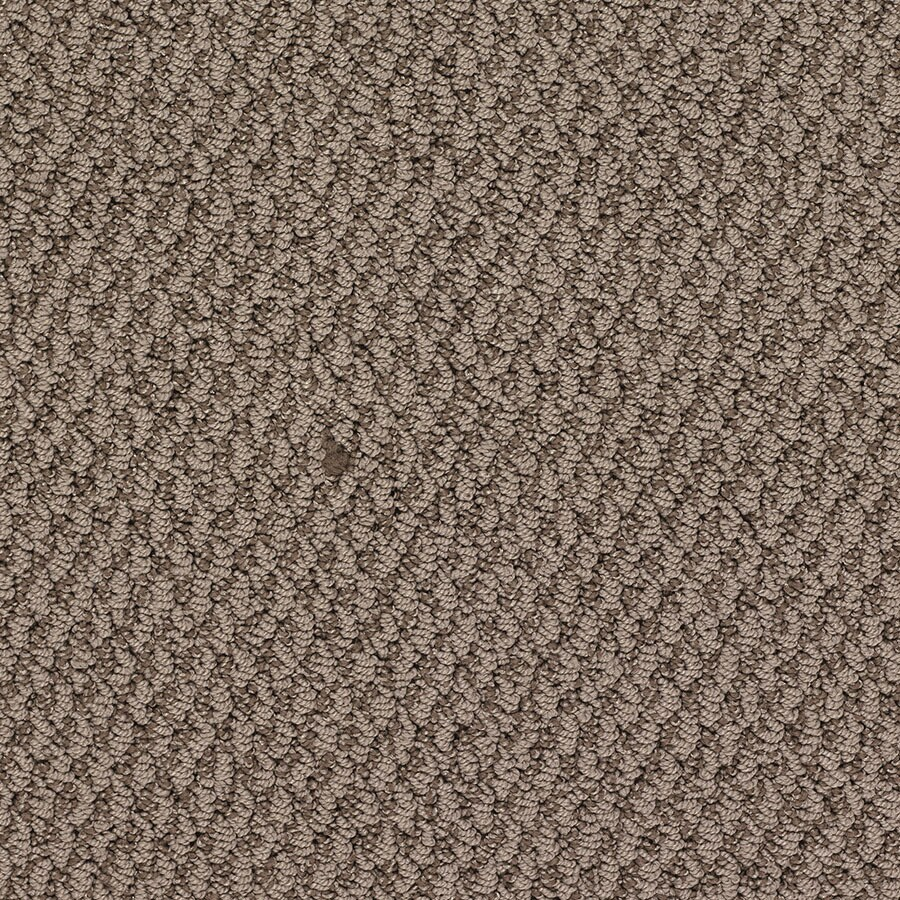 STAINMASTER Oracle Active Family Oliver Twist Berber Carpet Sample