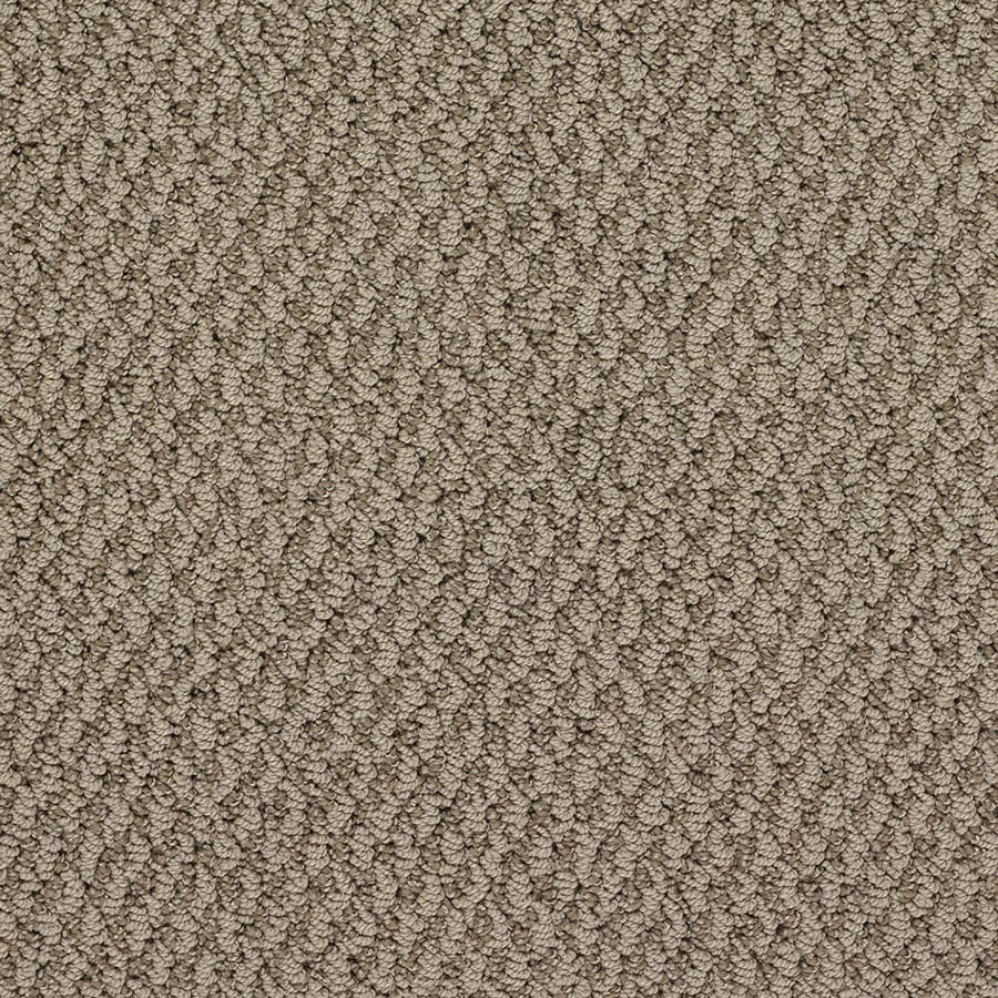STAINMASTER Oracle Active Family Grand Ole Opry Berber Carpet Sample