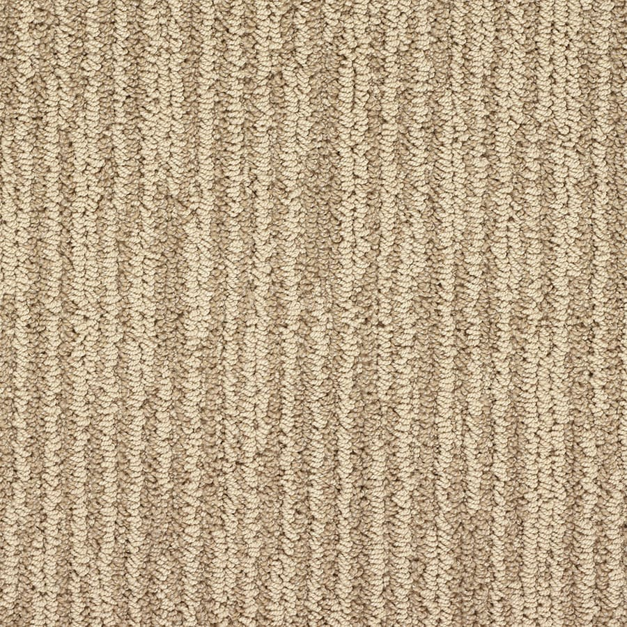 STAINMASTER Olympian Active Family Gateway Arch Berber Carpet Sample