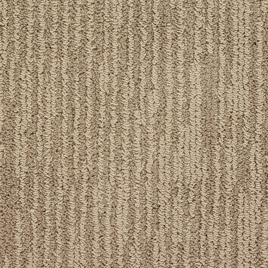 STAINMASTER Olympian Active Family American Flag Berber Carpet Sample