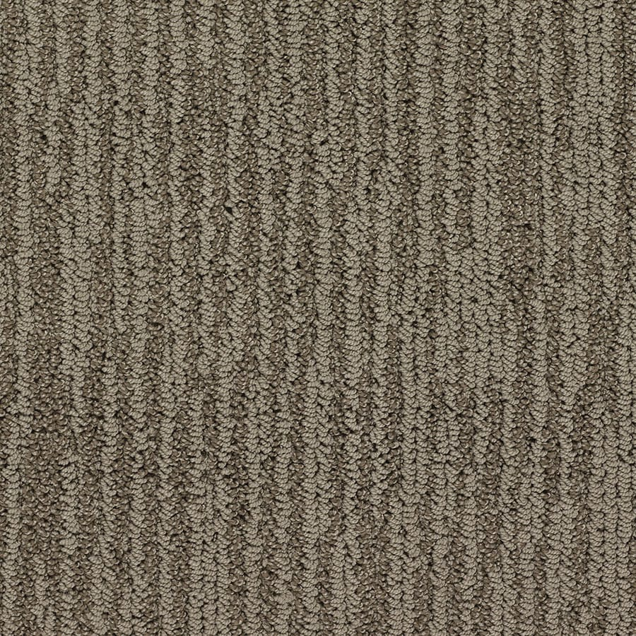 STAINMASTER Olympian Active Family King Tut Berber Carpet Sample