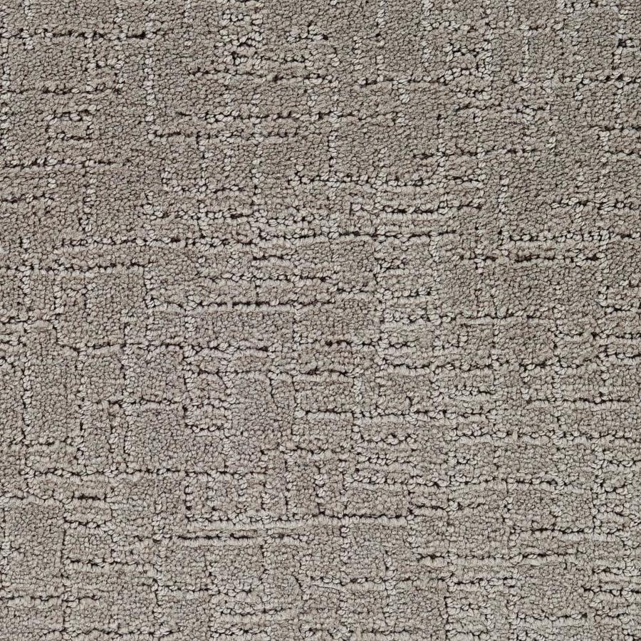 STAINMASTER Affirmed Active Family Soul Cut and Loop Carpet Sample