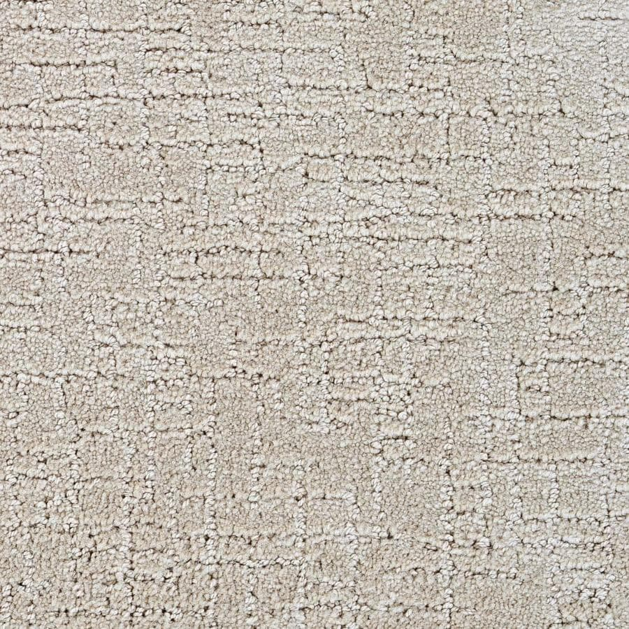 STAINMASTER Affirmed Active Family Teen Cut and Loop Carpet Sample