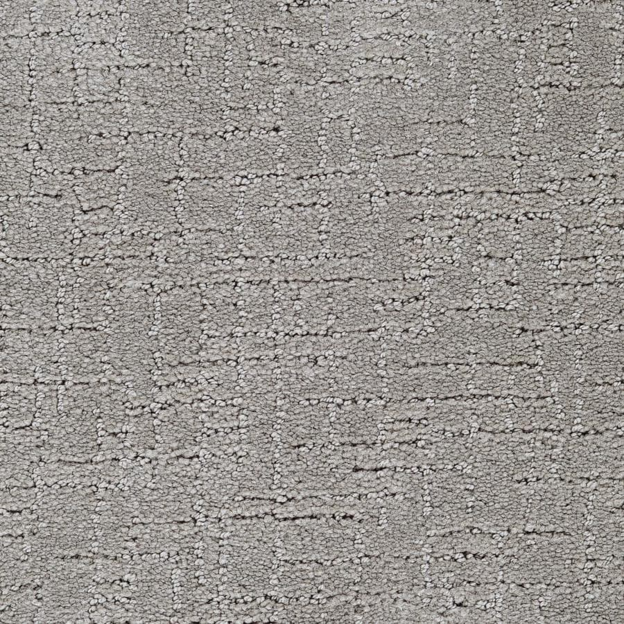 STAINMASTER Affirmed Active Family Listen Cut and Loop Carpet Sample