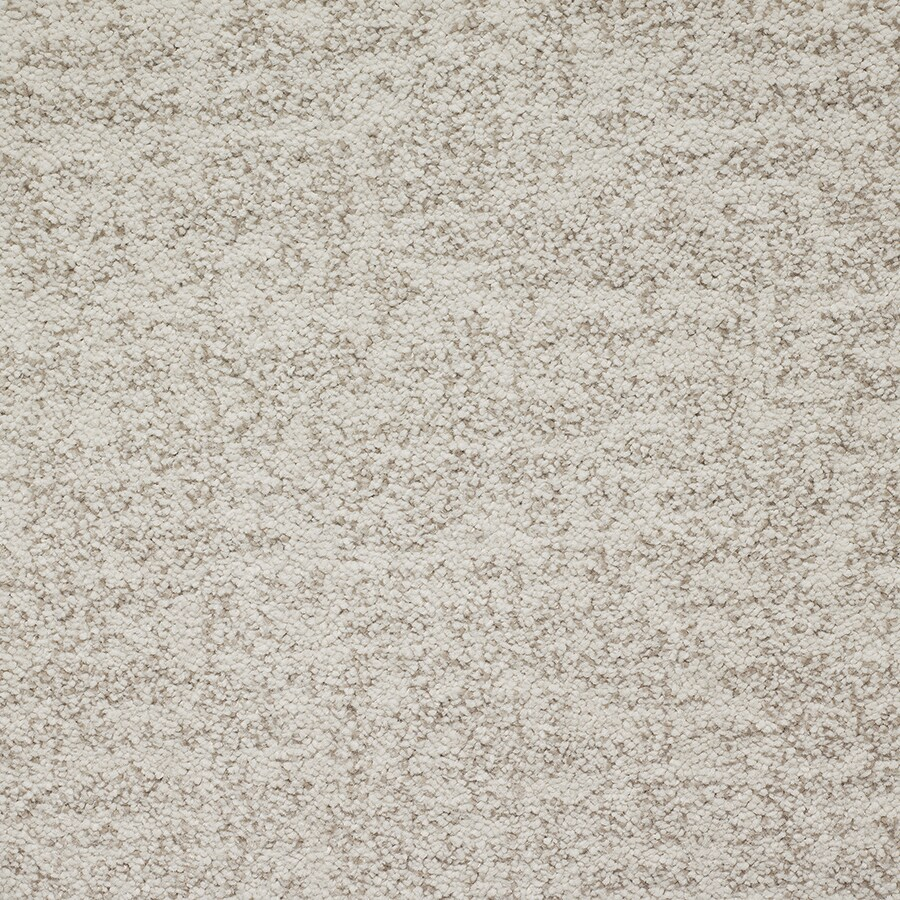 STAINMASTER Espree TruSoft Papyrus Cut and Loop Carpet Sample