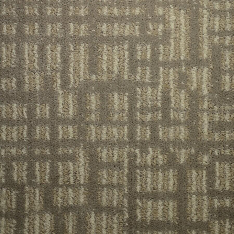 STAINMASTER Kingsland PetProtect Cumberland Cut and Loop Carpet Sample
