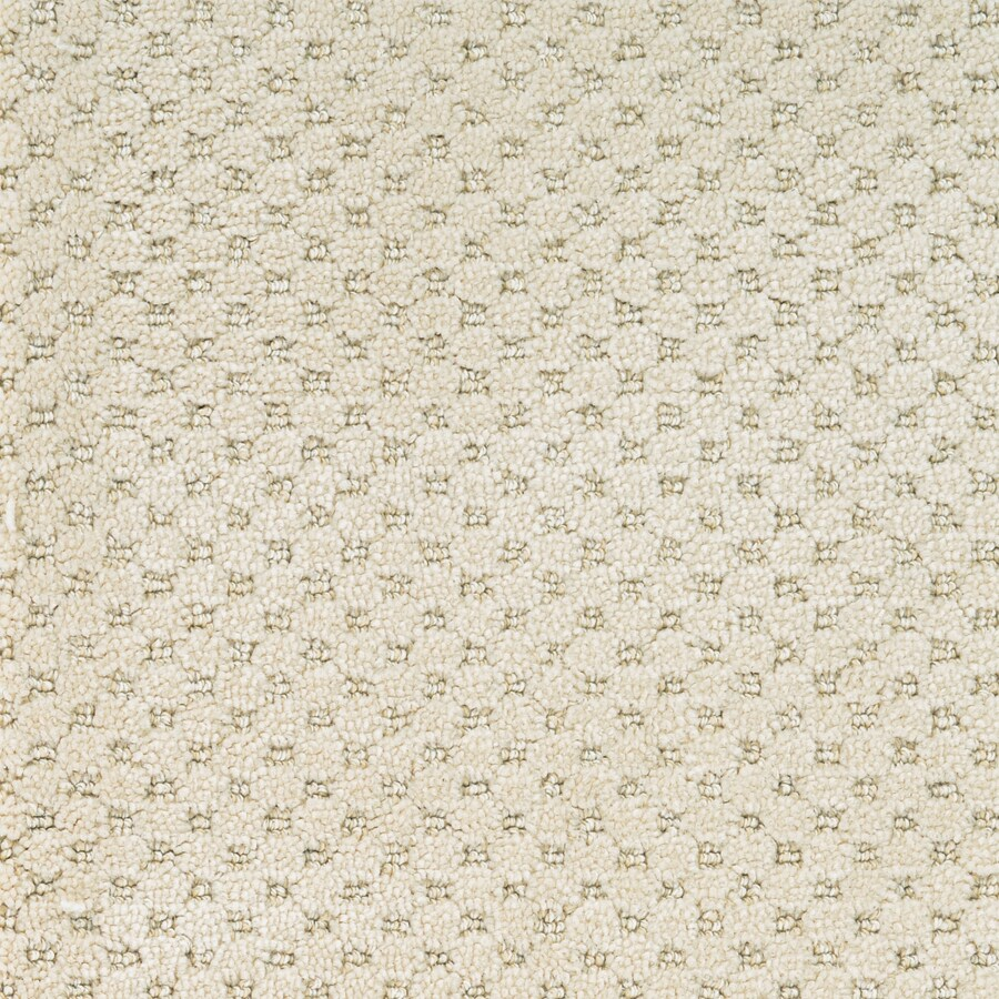 STAINMASTER Natural Essence PetProtect Royal Canvas Cut and Loop Carpet Sample