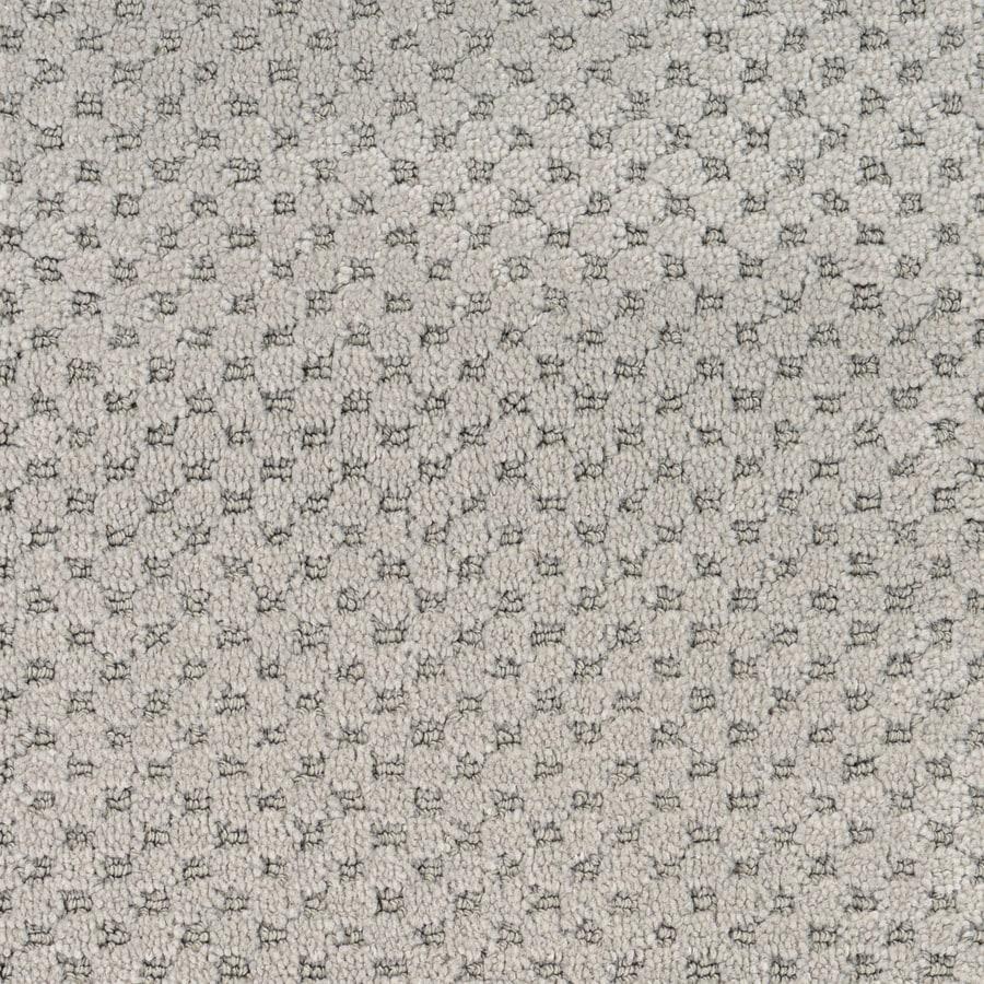 STAINMASTER Natural Essence PetProtect Nile Cut and Loop Carpet Sample