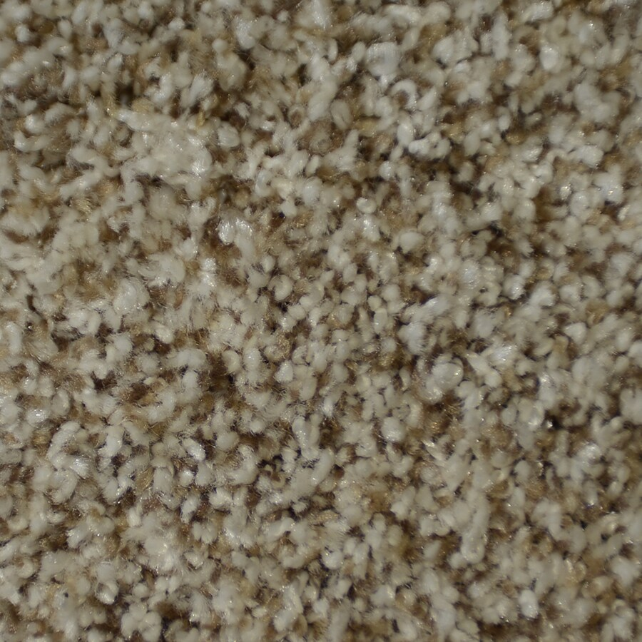 STAINMASTER On Broadway Active Family Newel Plus Carpet Sample