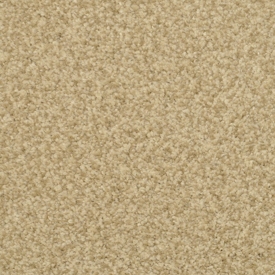 STAINMASTER Special Occasion Active Family Venetian Plus Carpet Sample