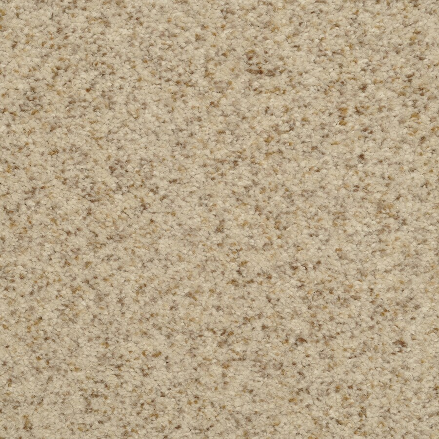 STAINMASTER Special Occasion Active Family Birch Mist Plus Carpet Sample