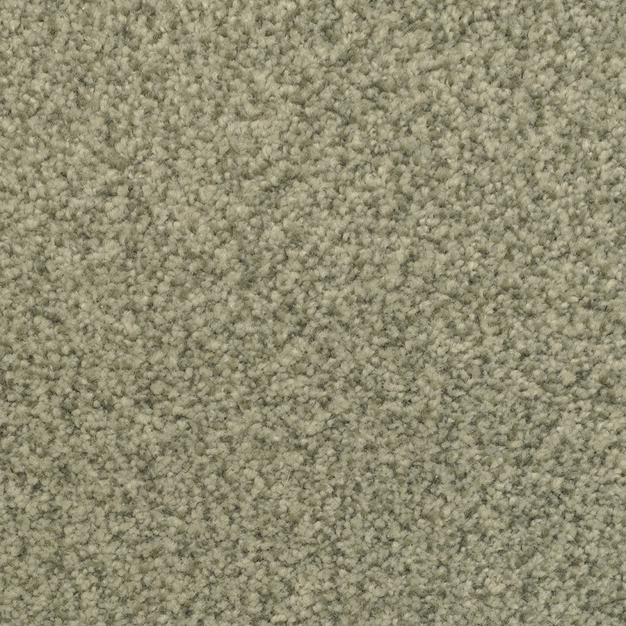 STAINMASTER Informal Affair Active Family Hi Rise Plus Carpet Sample