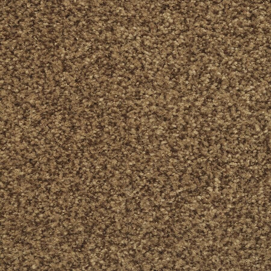 STAINMASTER Informal Affair Active Family Autumn Bud Plus Carpet Sample