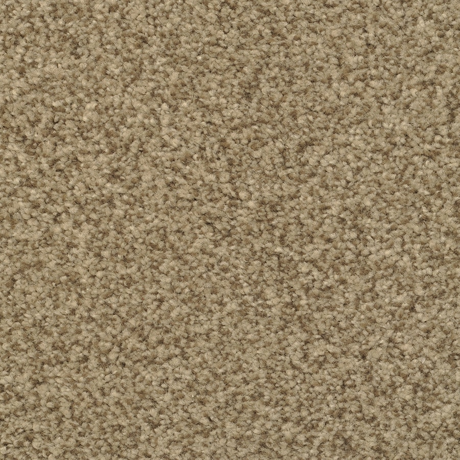 STAINMASTER Informal Affair Active Family Illusion Plus Carpet Sample