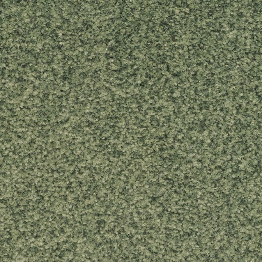 STAINMASTER Informal Affair Active Family Electra Plus Carpet Sample