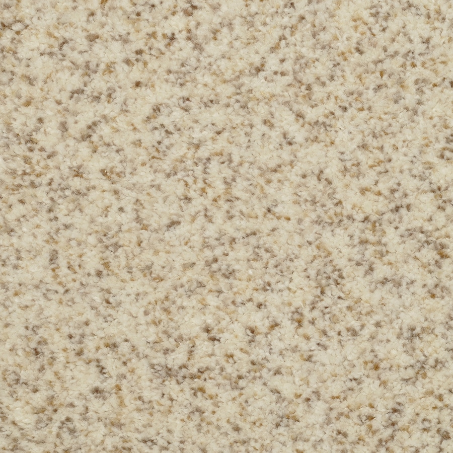 STAINMASTER Informal Affair Active Family Just Right Plus Carpet Sample