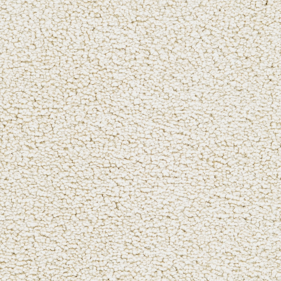 STAINMASTER Astral Active Family Turtle Dove Plus Carpet Sample