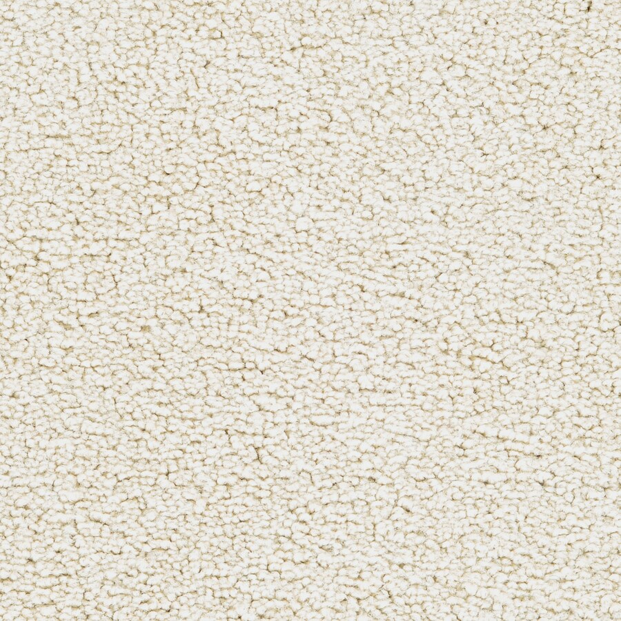 STAINMASTER Stellar Active Family Turtle Dove Plus Carpet Sample