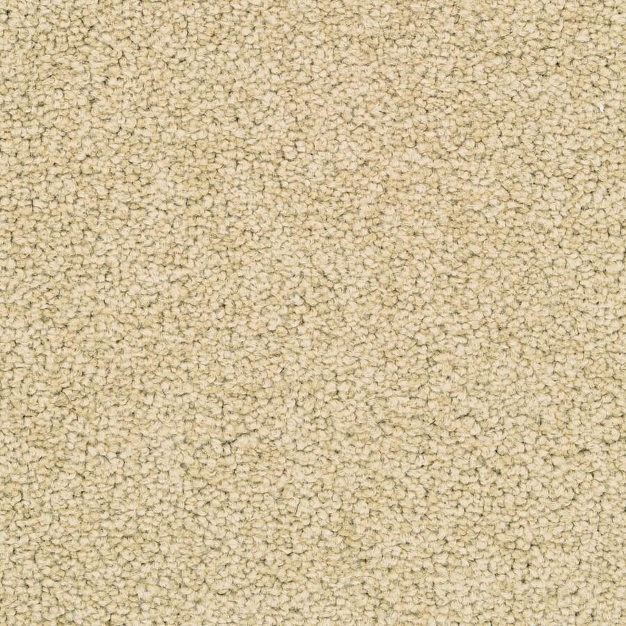 STAINMASTER Stellar Active Family Eggplant Plus Carpet Sample