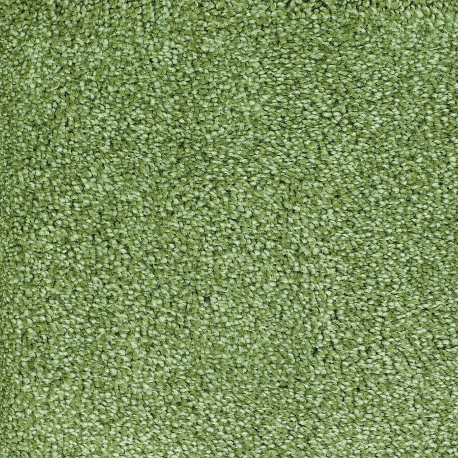STAINMASTER Briar Patch TruSoft Green Plus Carpet Sample