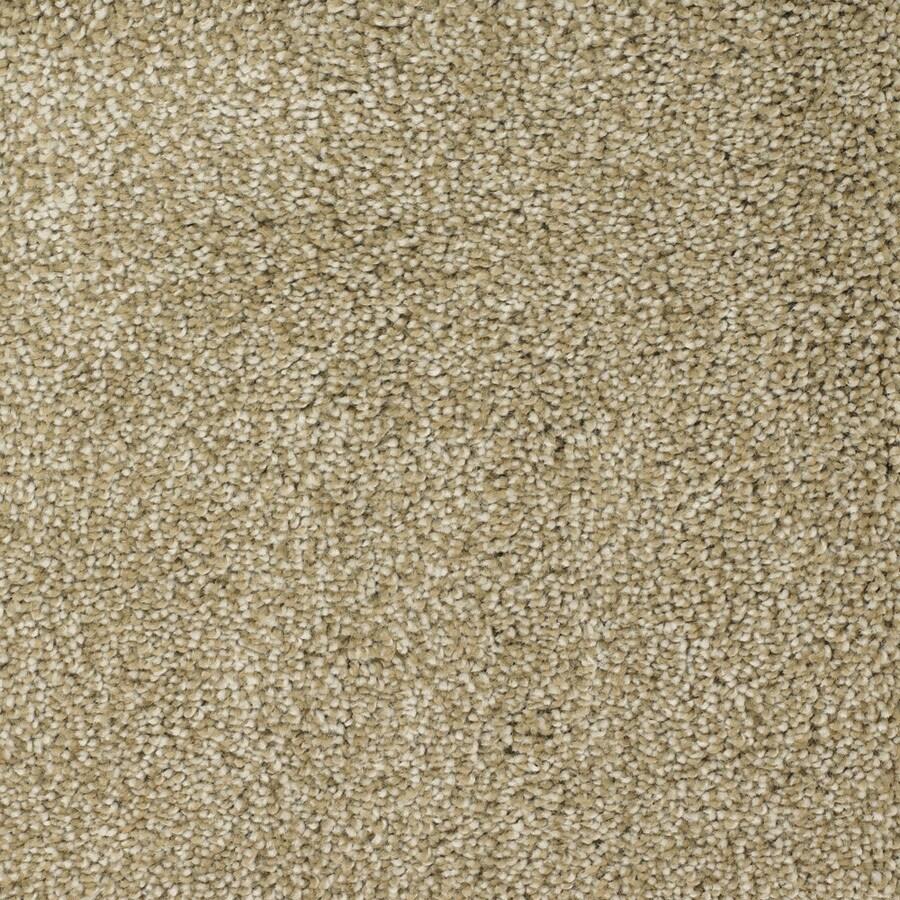 STAINMASTER Shafer Valley Trusoft Brown/Tan Plus Carpet Sample