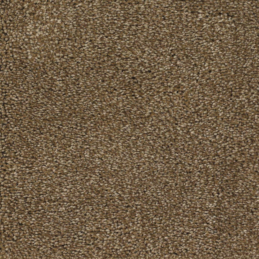 STAINMASTER Shafer Valley Trusoft Brown/Tan Plus Carpet Sample