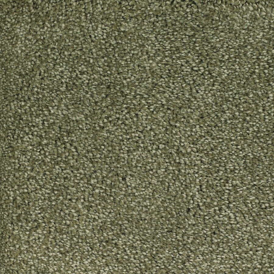 STAINMASTER Shafer Valley Trusoft Green Plus Carpet Sample