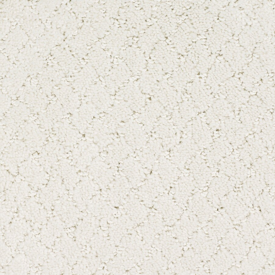 STAINMASTER Galesburg TruSoft Cream/Beige/Almond Cut and Loop Carpet Sample