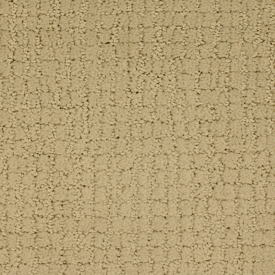 STAINMASTER Perpetual TruSoft Yellow/Gold Cut and Loop Carpet Sample