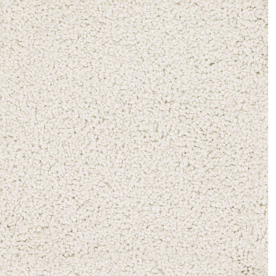 STAINMASTER Pomadour TruSoft Cream/Beige/Almond Plus Carpet Sample