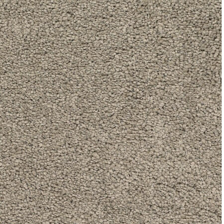 STAINMASTER Pomadour TruSoft Brown/Tan Plus Carpet Sample