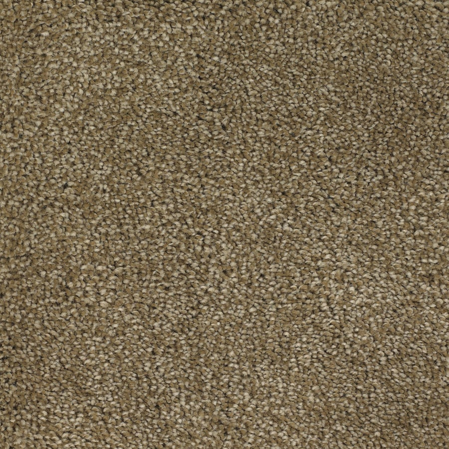 STAINMASTER Pleasant Point TruSoft Boothbay Plus Carpet Sample