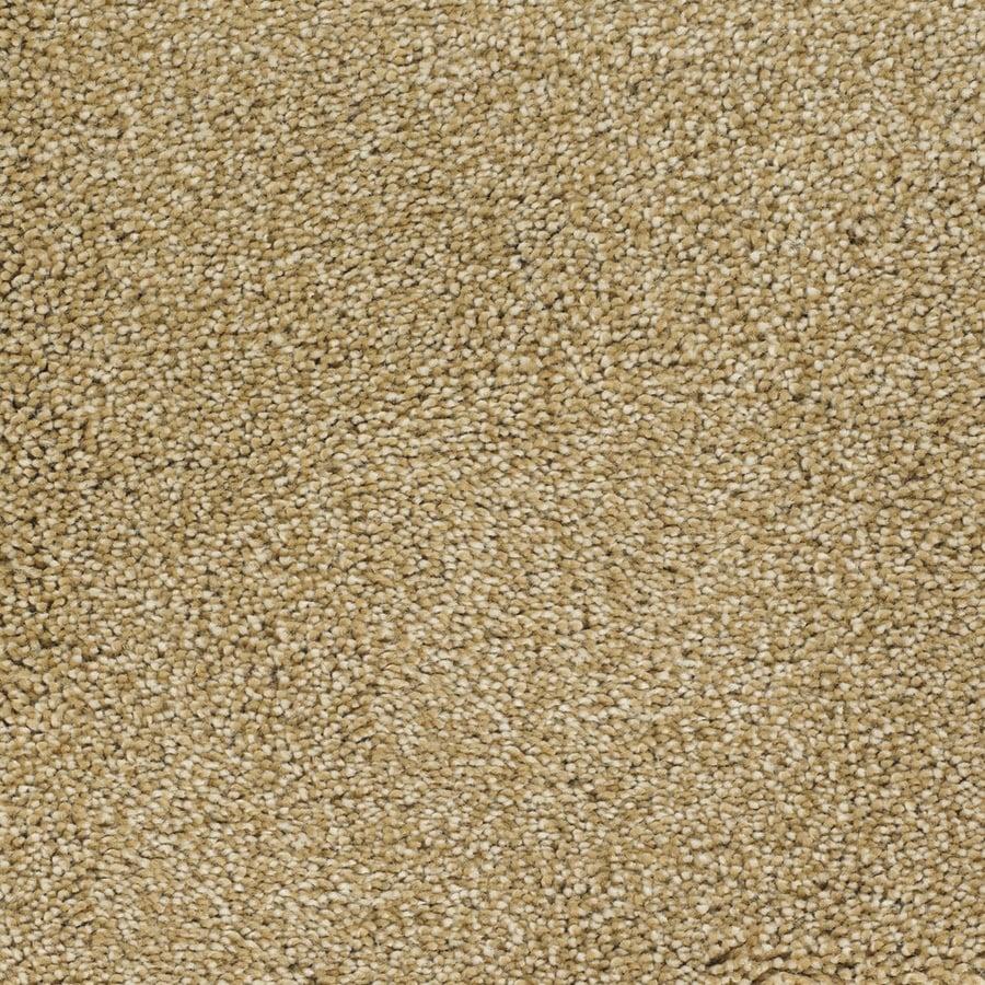 STAINMASTER Pleasant Point TruSoft Chinchilla Plus Carpet Sample